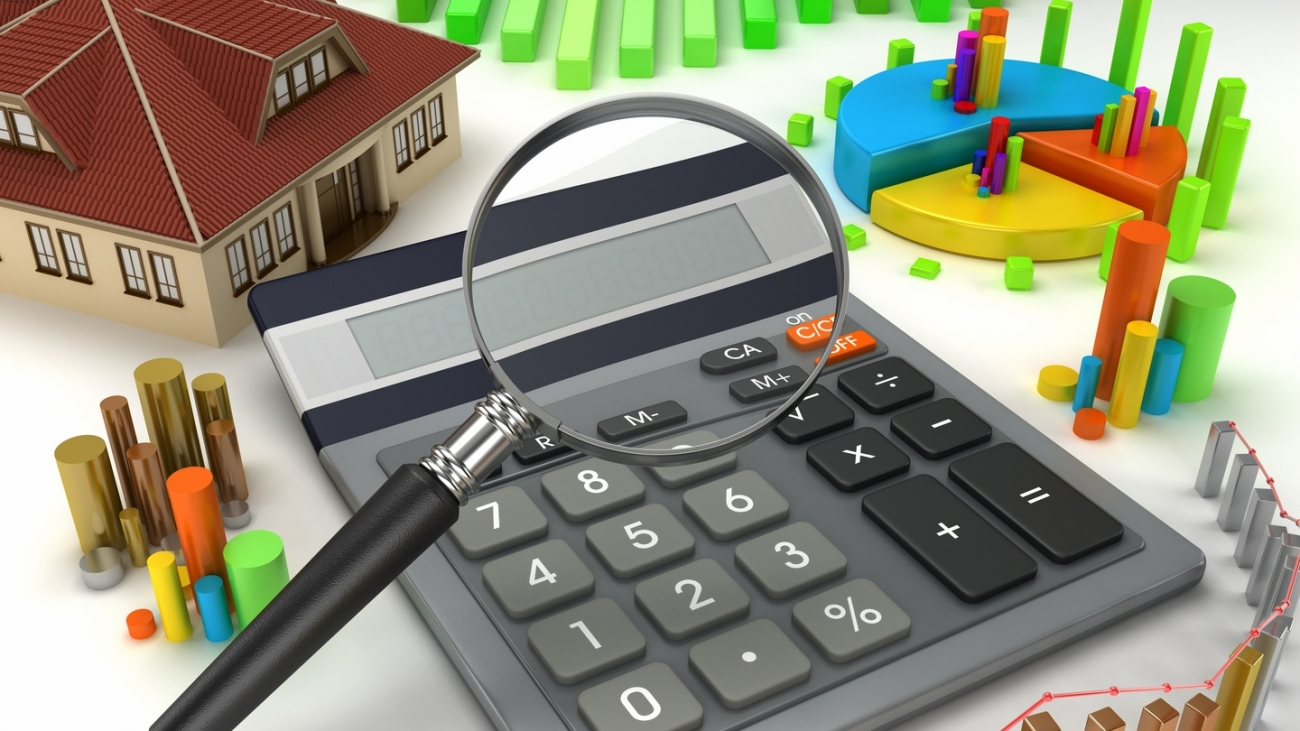 Финансово-экономическая экспертиза муниципальной программы