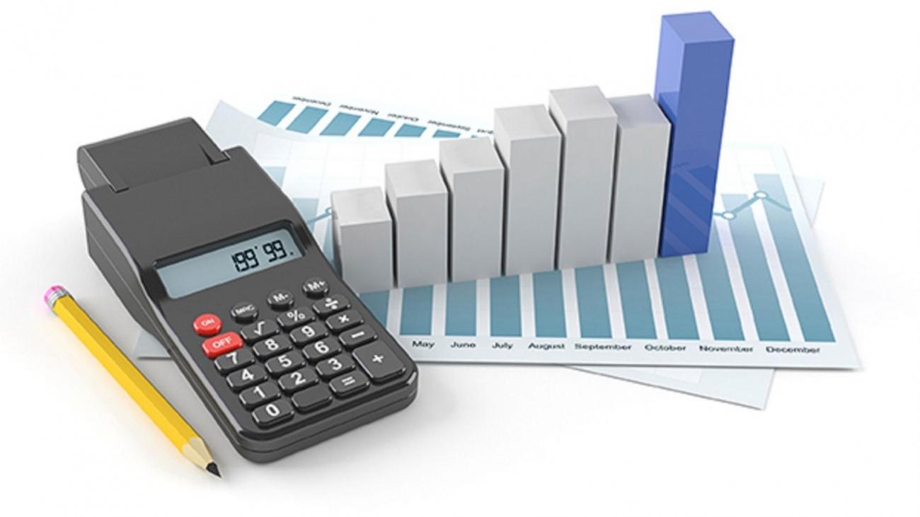 Бухгалтерская и финансово-экономическая экспертизы 1